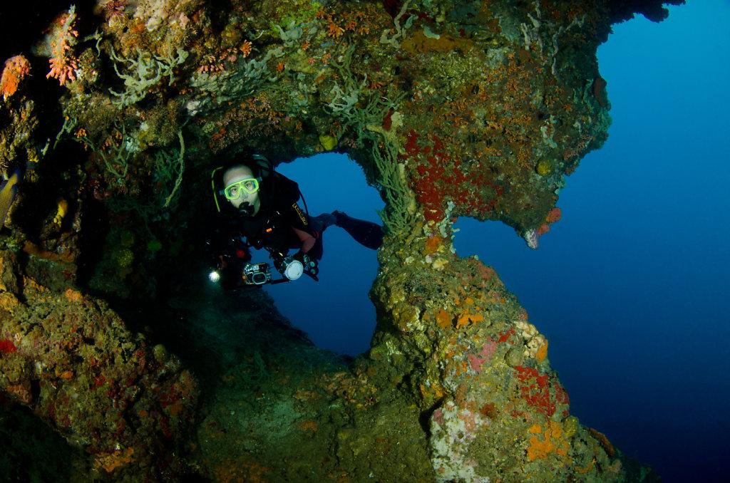 Diver & Rockscape